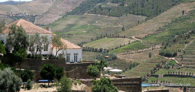 Quinta Romaneira - Douro River Valley, Portugal